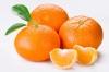 Клементин (гибрид мандарина и апельсина) Citrus clementina Oronules