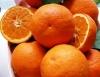 Hamlin sweet orange
