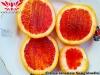 Sanguinello Citrus Sinensis КРОВАВЫЙ АПЕЛЬСИН