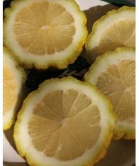 "С.limon ""Bizzarro, Лимон ""Биццаро"""